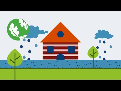 Trees. Water. Soil. | Invest in Nature's Potential [Video]