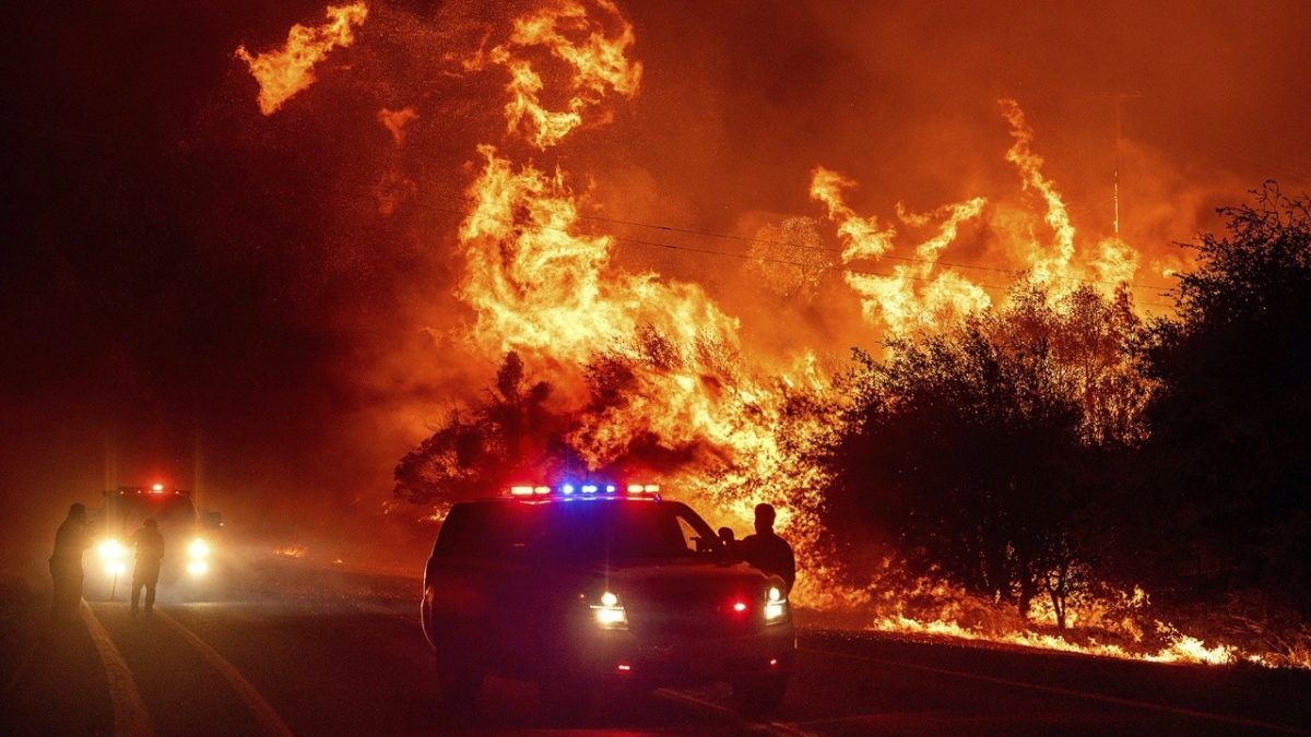 Whats the best way to combat US wildfires? | On Air Videos [Video]