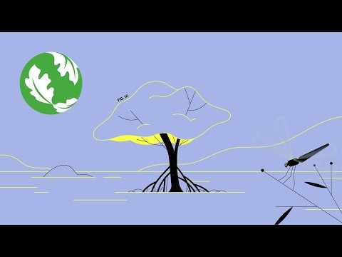 A Natural Solution to Climate Change [Video]