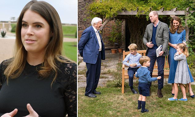 Princess Eugenie follows Prince Harry and William's footsteps [Video]
