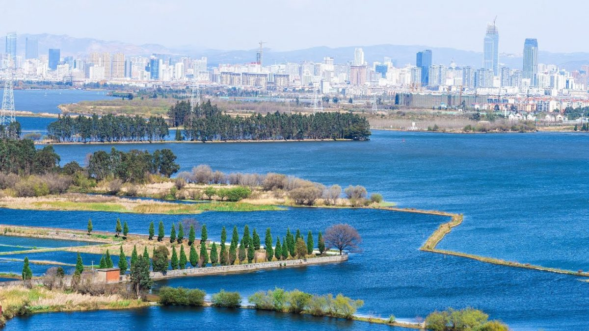 Enjoy the charming view of Haihong Wetland Park in SW China's Kunming City  NewsX.tv [Video]