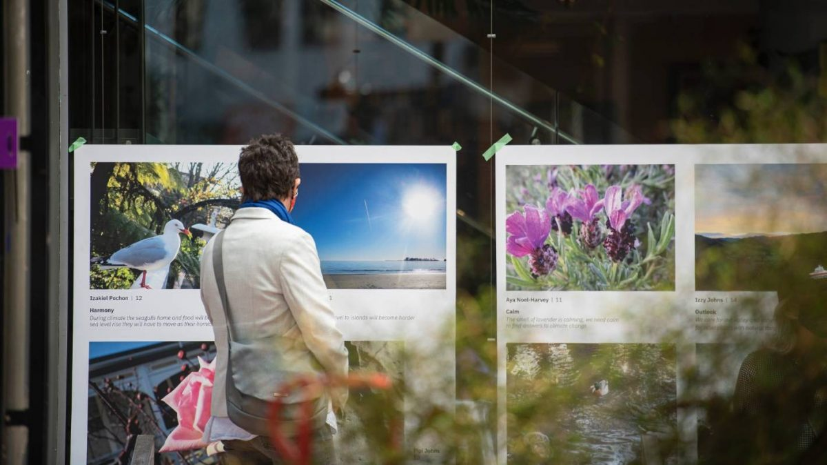 Nelson Arts Festival launches free photography exhibition [Video]