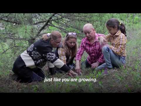 Grandmothers campaign plants over a million trees [Video]